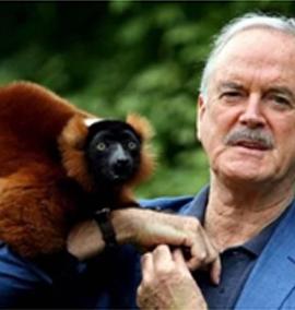 John Clees e o lêmure da sua espécie